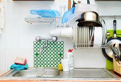 Masz je w kuchni? Zrób porządek i pozbądź się ich natychmiast