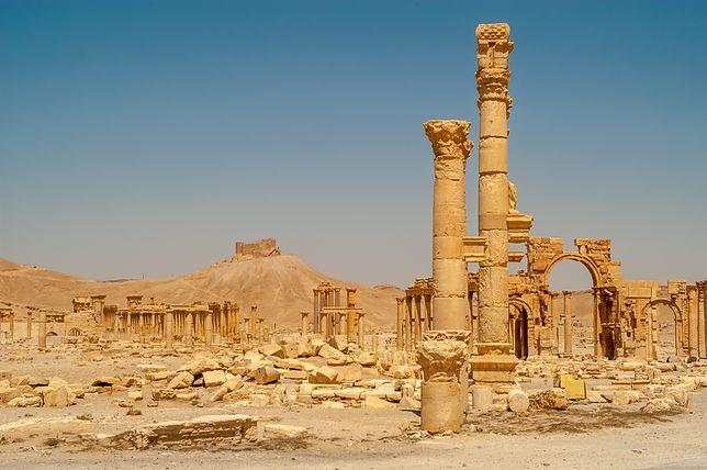 Morderstwo wybitnego archeologa w Palmyrze