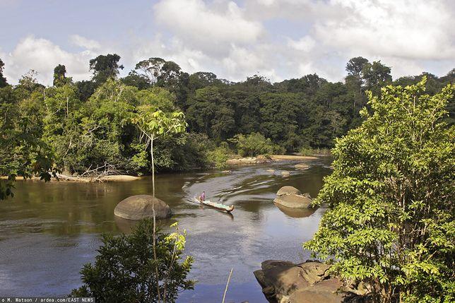 Surinam dawniej nazywany był Gujaną Holenderską, ponieważ już w XVI wieku na terenach dzisiejszego Surinamu obecni byli Holendrzy.