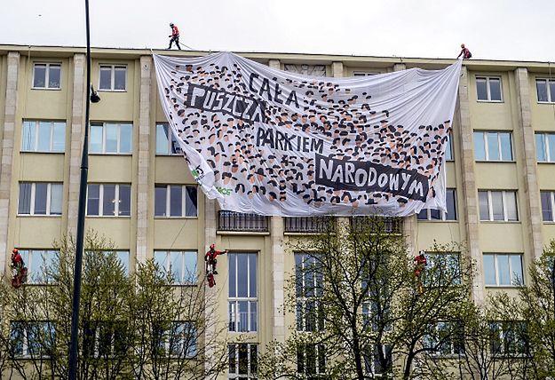 Greenpeace publikuje kolejne dokumenty. Ministerstwo skłamało?