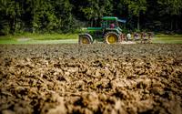 Dopłaty bezpośrednie dla rolników. NIK ujawnia niewydolność systemu