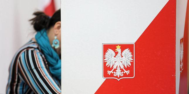 Holland, Janda, Zelnik - ludzie filmu i teatru o wyborach samorządowych