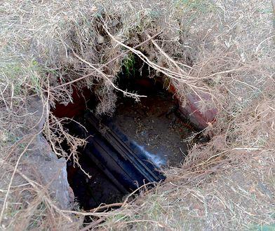 Szczecin: Dzieci odkryły stuletni grobowiec