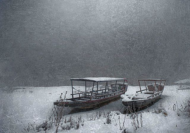 Niezwykłe zdjęcia przyrody polskiego fotografa