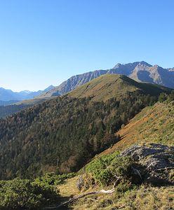 Pireneje. Makabryczne odkrycie w górach