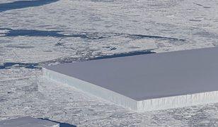 Ogromną płytę zauważono na Antarktyce