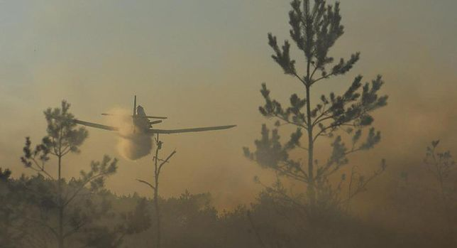Pożar lasu w gminie Odrzywół. W akcji samoloty gaśnicze
