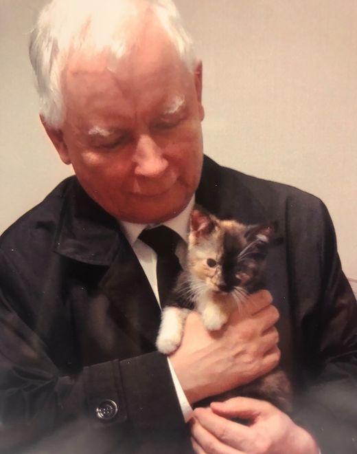 Prezes PiS Jarosław Kaczyński znowu musi pospieszyć na ratunek zwierzętom.