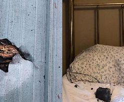 Przebiło dach i wylądowało w łóżku kobiety. Niesamowite, co spadło z nieba
