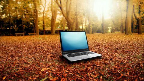 Szukasz laptopa? Zobacz ranking polecanych laptopów na październik 2020