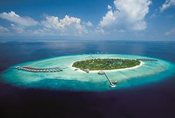 Lubisz czytać? Leć na Malediwy! Praca marzeń w kurorcie