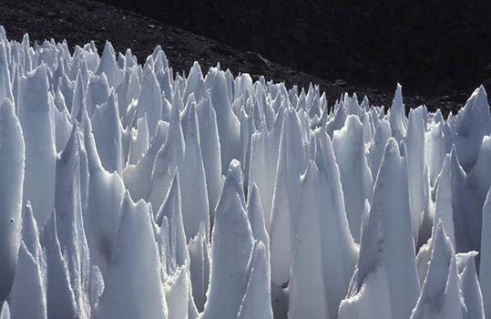 Pole penitentów w Górnym Rio Blanco, (Centralne Andy Argentyńskie). Ostrza mają pomiędzy 1,5 a 2 m wysokości