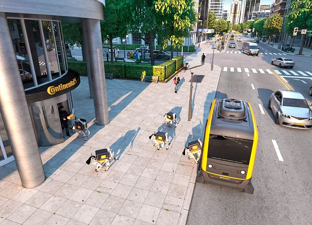 Psy-roboty będą dostarczać paczki?