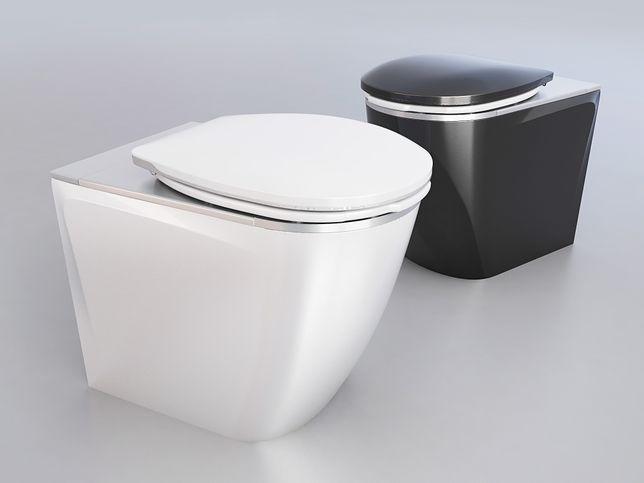 Polskie toalety trafiają do zagranicznych pociągów