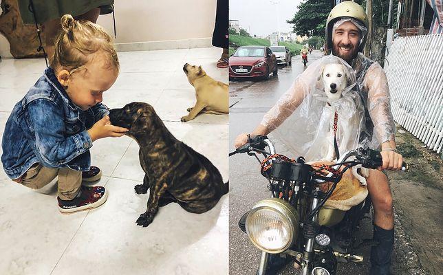 Te psy miały trafić na talerz w wietnamskim barze. Michał i jego rodzina chcą zabrać je do Polski