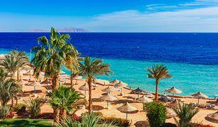 Egipt to kierunek dla spragnionych słońca i kąpieli w ciepłym morzu