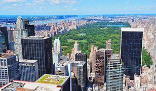 New York. Stolica stanu Nowy Jork. Atrakcje. Co warto zobaczyć