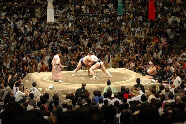 Za darmo: Mistrzostwa Europy w Sumo