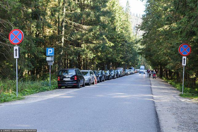 Palenica Białczańska, zatłoczony parking zmusił turystów do parkowania aut na drodze