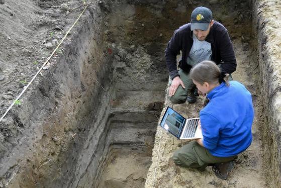 Leśniczy natrafił na ślady osady sprzed 4500 lat (Lasy Państwowe/Jan Piotrowski)