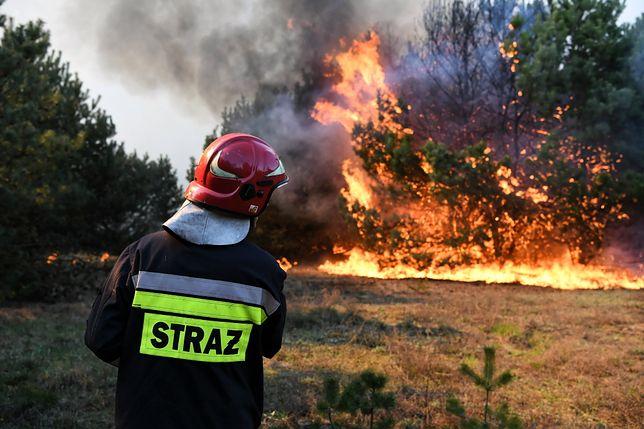 W wielu regionach kraju obowiązuje trzeci, najwyższy stopień zagrożenia pożarowego
