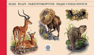 Encyklopedia zwierząt świata - duża