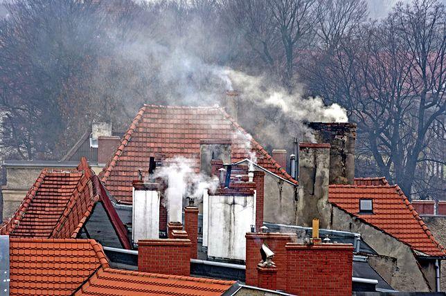 Od września całkowity zakaz ogrzewania domów węglem i drewnem