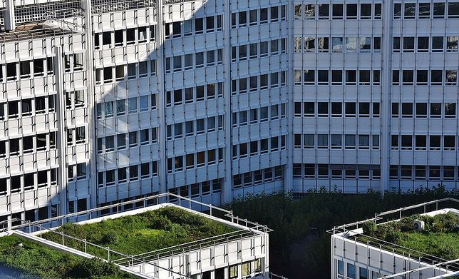 PKP przekazały wykaz działek do programu Mieszkanie plus. Część z nich znajduje się w Warszawie