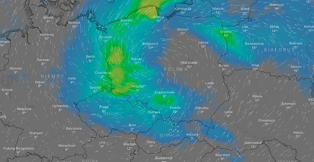 Pogoda w środę o godz. 11. Deszcz spadnie w dużej części kraju