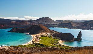 Galapagos. Zachwycający archipelag, który powstał z lawy i popiołów