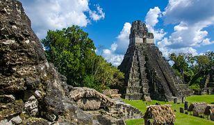 Meksyk - odkryto dwa nowe miasta Majów
