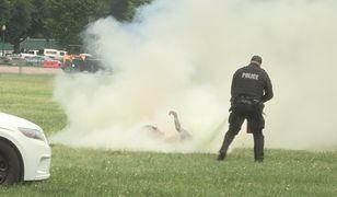 Desperata natychmiast ugasili policjanci patrolujący rejon Białego Domu