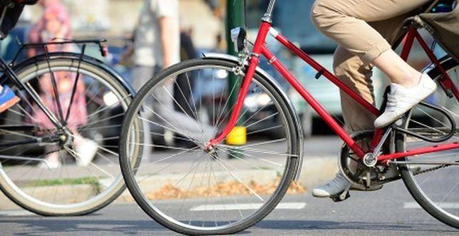 """Tytuł rowerowej stolicy Europy wróci do Warszawy? Mieszkańcy pomogą """"wykręcić"""" kilometry"""