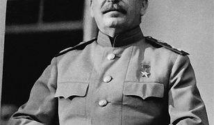 Być może Stalin podobnym wzrokiem spoglądał na ludzi, którzy nie chcieli napić się z nim wódki.