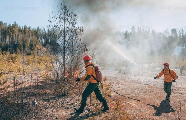 Potężne pożary lasów. Stan nadzwyczajny w Rosji