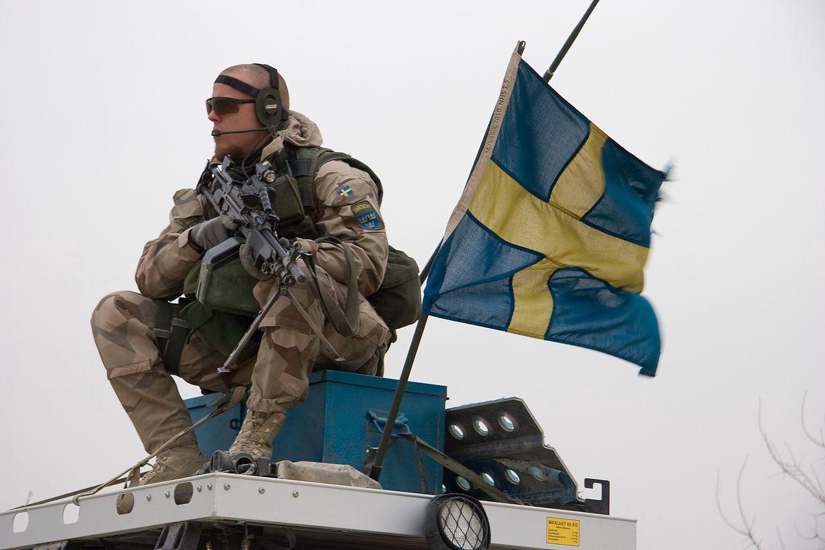 Zdjęcie ilustracyjne; Brindefalk from Karlskrona, Sweden, CC BY 2.0