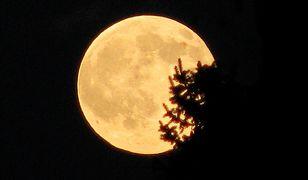 Nie przegap pełni Księżyca