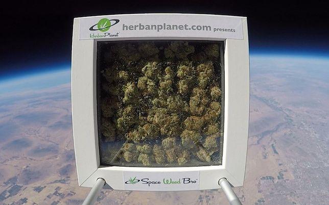 Inna z ekip wysłała w zeszłym roku pudełko marihuany w kosmos