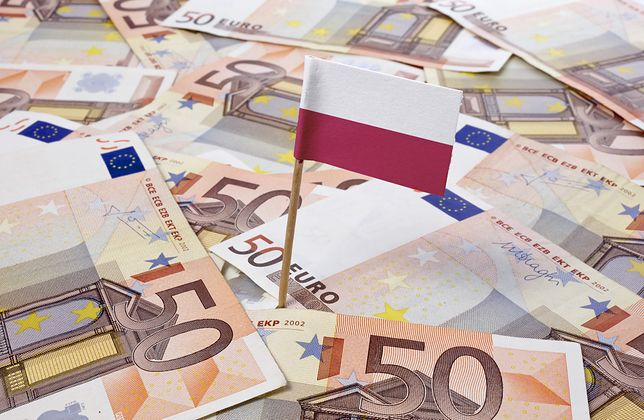 Euro jest względem złotego wyceniane najwyżej od pół roku.