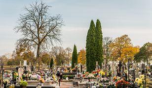 Warszawa. Trzy cmentarze zamknięte przez trzy dni. Ratusz odnosi się do decyzji