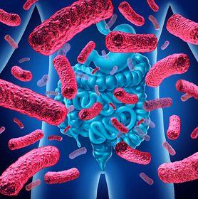 Bakterie probiotyczne