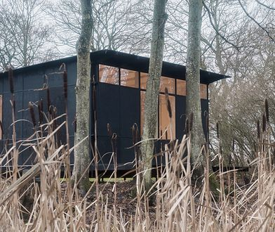 Kontrowersyjny projekt domu Ikea za niewielkie pieniądze