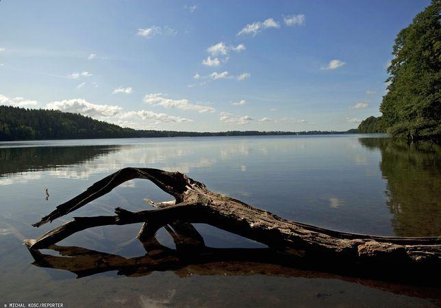 """Elektrownia spuściła wodę z jeziora Głębokie. Marszałek ostrzega, że grozi to """"katastrofą ekologiczną"""""""