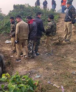 Indie. Słonie, w tym ciężarna samica, weszły na tory. Nie miały szans