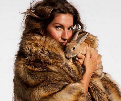 Gisele Bundchen w walce o los bezbronnych zwierząt. Modelka wzięła udział w głośnej akcji