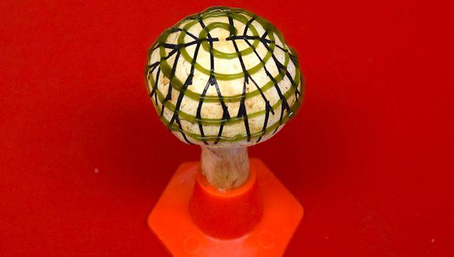 Pieczarka dwuzarodnikowa, pokryta spiralą grafenowych wstążek i sinic (zielona spirala / Stevens Institute of Technology