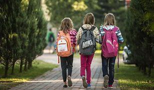 Szczecin. Podejrzany o próbę porwania dziewczynek spędzi najbliższy miesiąc w areszcie