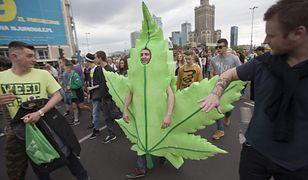 Marihuana medyczna legalna od 1 listopada. W praktyce, nadal będzie niedostępna
