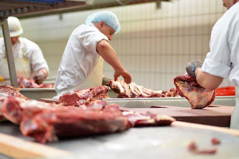 Ognisko koronawirusa w fabryce mięsa w Niemczech. Firma obwinia Polaków i Rumunów