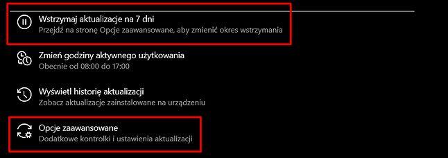 Wstrzymywanie aktualizacji w Windows Update. Dłuższe okresy są dostępne w opcjach zaawansowanych, fot. Oskar Ziomek.